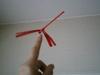 2006sayaunndoukai_002