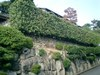 Kyoto20079_005