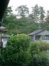 Kyoto20079_033