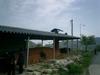20084korea_218