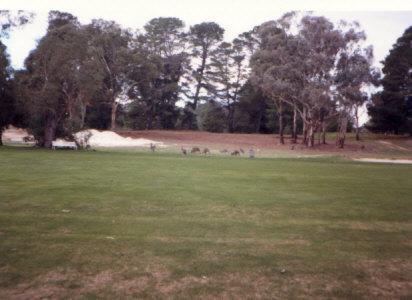 ゴルフ場です