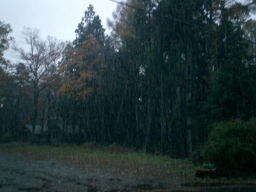 雪が強くなる