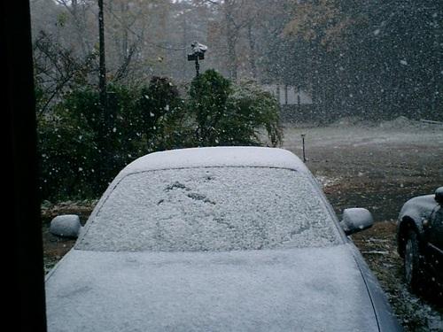 岩ちゃん車真っ白