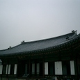 20084korea_285