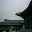 20084korea_286