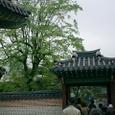 20084korea_298