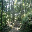 本宮への道