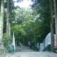 20085kumanoaoi_108