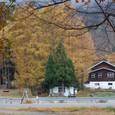『ちんぐるま』 窓の外は秋