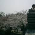 鼈頭渚(げんとうしょ)公園