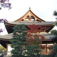 国宝 東福寺三門
