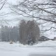 早朝から除雪する岩岳スキー場