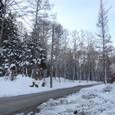 夜明けに除雪