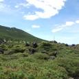 北横岳への登山路
