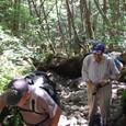 尾根に直登する道はガレの急斜面