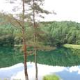 蓼科高原の神秘的な沼