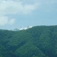 木崎湖の新緑と北アルプス