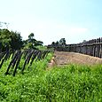 城柵、土塁、環濠、逆茂木(さかもぎ)