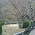 吉香(きっこう)公園