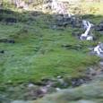 モレーンの滝