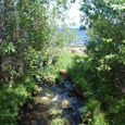 小川の流れ