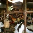 シルク織り工房