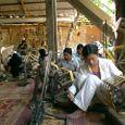 シルク織り工房の人々