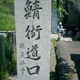 20085kumanoaoi_232