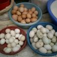 卵を買いました