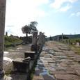 アスクレピオンへの参道