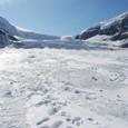 アイスフォールの向こう側がコロンビア大氷原