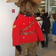 ムースの警察