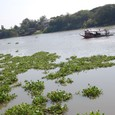 チャオプラヤー川は歴史を眺めて来た