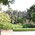 タイ国王80歳記念、修好120周年記念 庭園