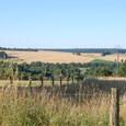 畑と牧草地