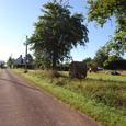 牧草と田舎道