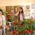 ブルゴーニュの花屋さん