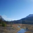 ボウ・レイク(Bow Lake)