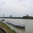 ドナウ川とノヴィ橋