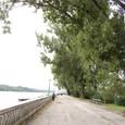 ドナウ河畔