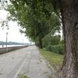 ドナウ川河畔