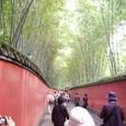 有名な竹と赤土塀の道