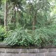 劉備の墳墓