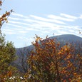 ブナの森から見る箕輪山