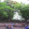 2011年文廟界隈