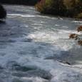 ナイアガラ川と紅葉
