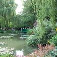 太鼓橋と柳と池