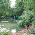 モネが描き続けた睡蓮の池