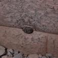 これも小さい石だ