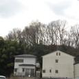 茶臼山古墳後円部